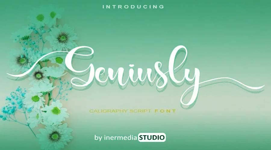 Geniusly Calligraphy Font Free Download