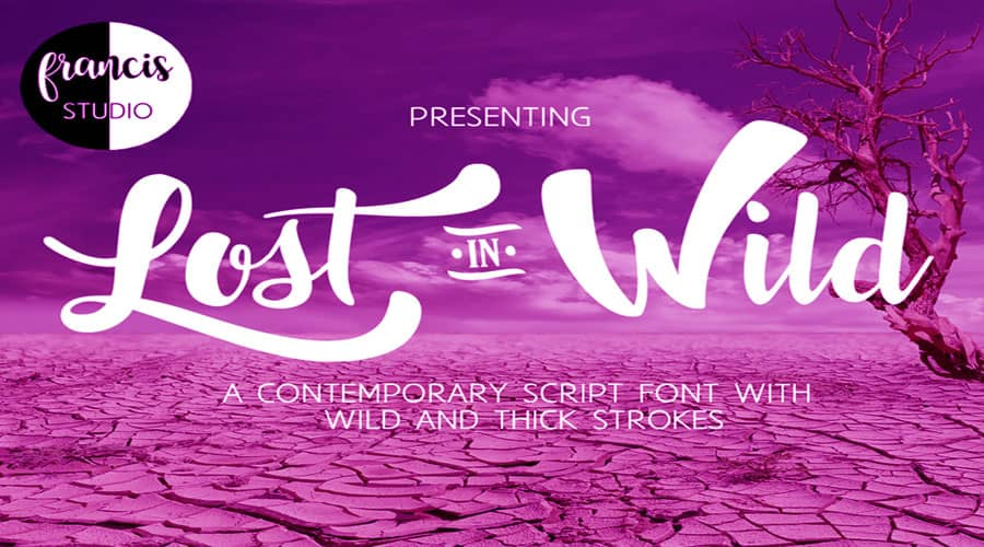 Lost in Wild Font Free Download