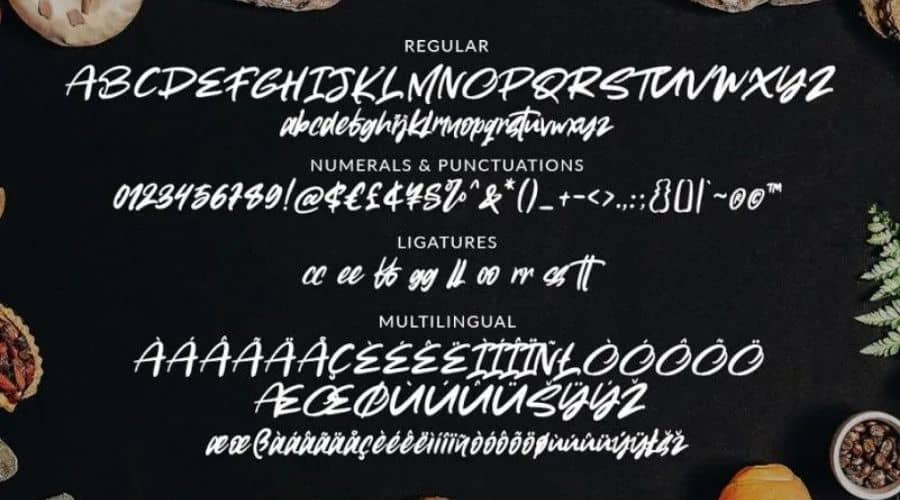 Toothless Brush Font View