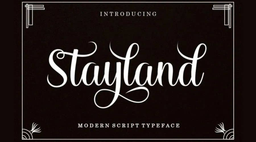 Stayland Calligraphy Font Free Download